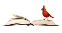 birdsforbookslogo